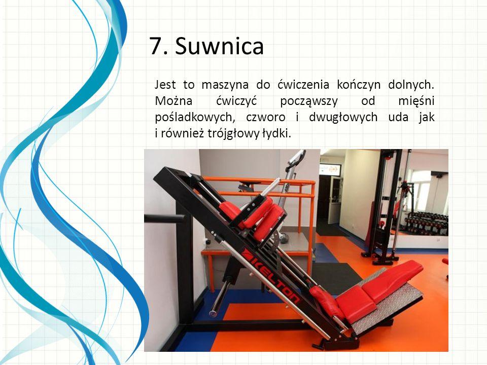 7. Suwnica