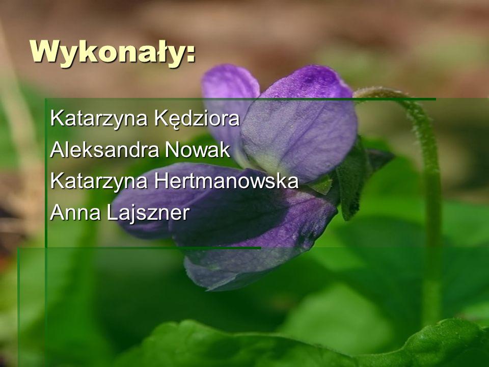 Wykonały: Katarzyna Kędziora Aleksandra Nowak Katarzyna Hertmanowska
