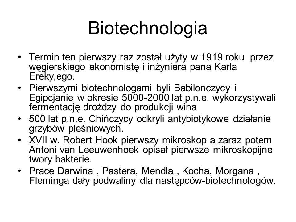 Biotechnologia Termin ten pierwszy raz został użyty w 1919 roku przez węgierskiego ekonomistę i inżyniera pana Karla Ereky,ego.