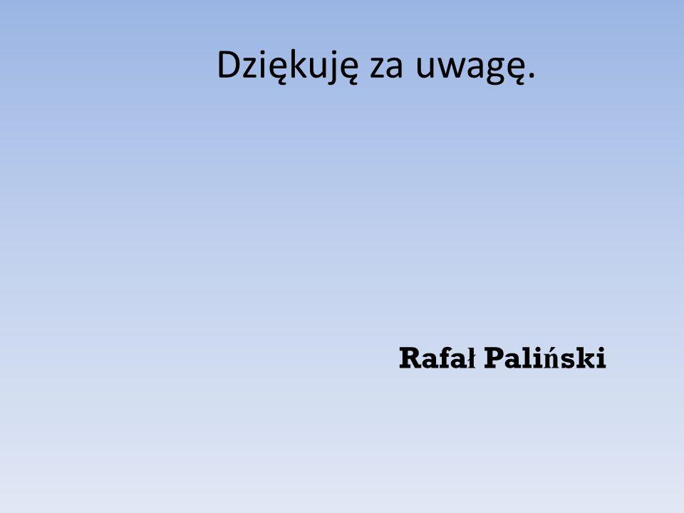 Dziękuję za uwagę. Rafał Paliński
