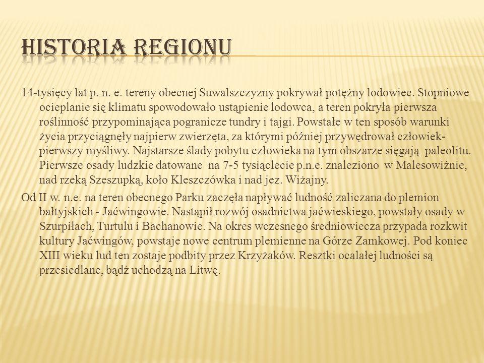 Historia regionu