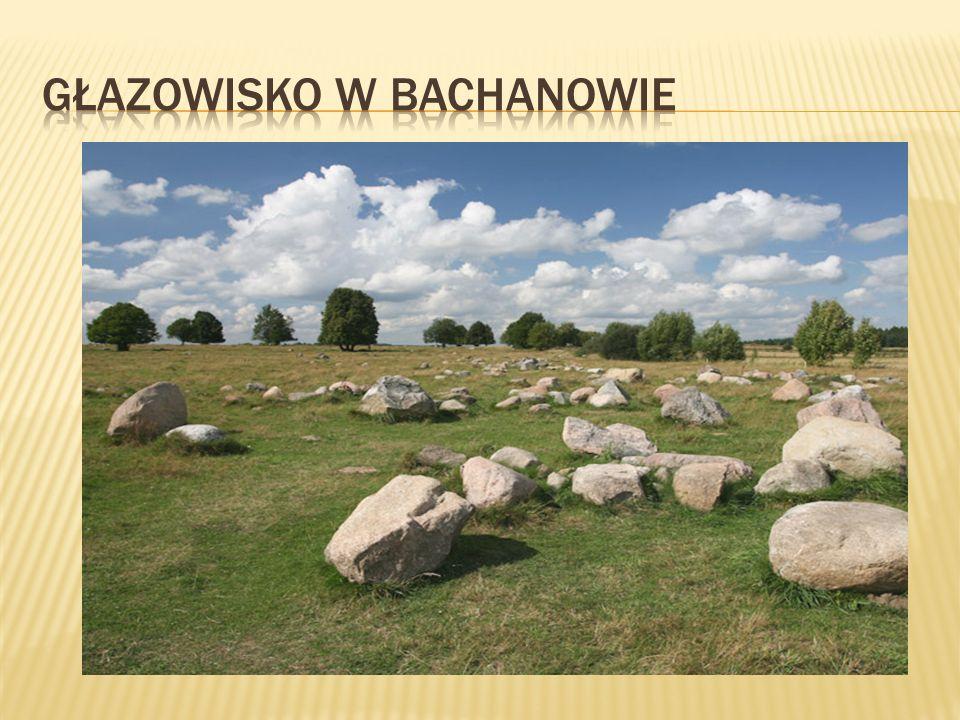 Głazowisko w Bachanowie
