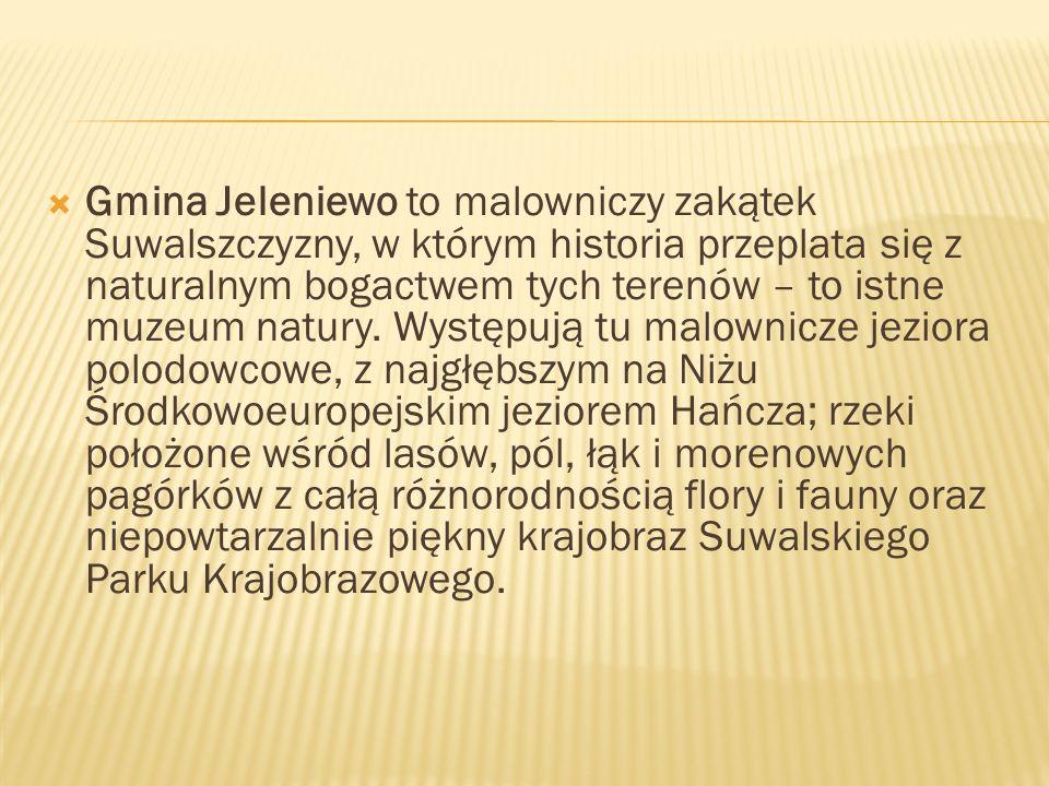 Gmina Jeleniewo to malowniczy zakątek Suwalszczyzny, w którym historia przeplata się z naturalnym bogactwem tych terenów – to istne muzeum natury.