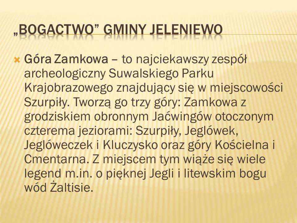 """Bogactwo Gminy Jeleniewo"