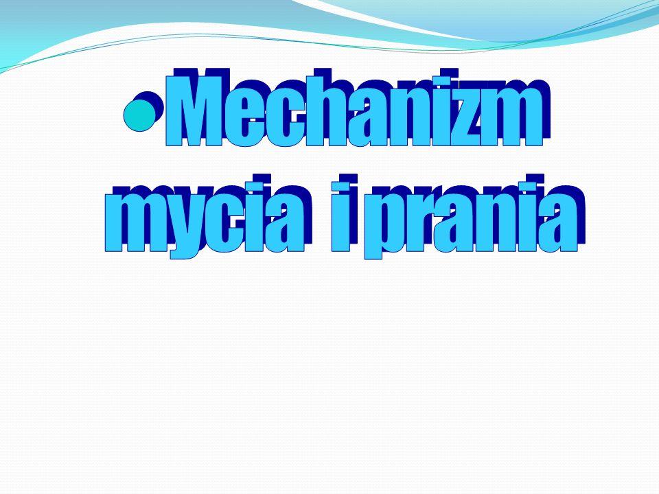 Mechanizm mycia i prania