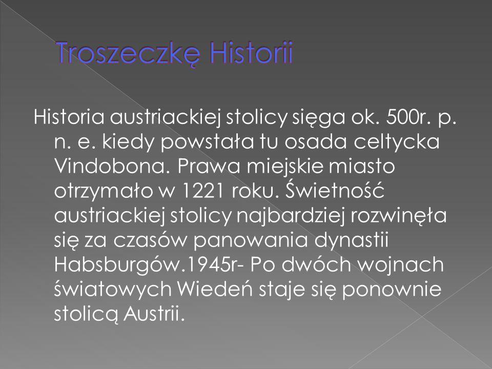 Troszeczkę Historii