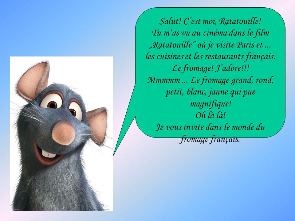 Salut! C'est moi, Ratatouille!