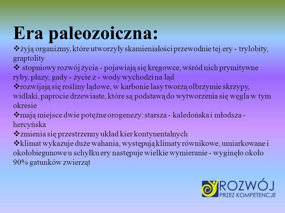 Era paleozoiczna: żyją organizmy, które utworzyły skamieniałości przewodnie tej ery - trylobity, graptolity.