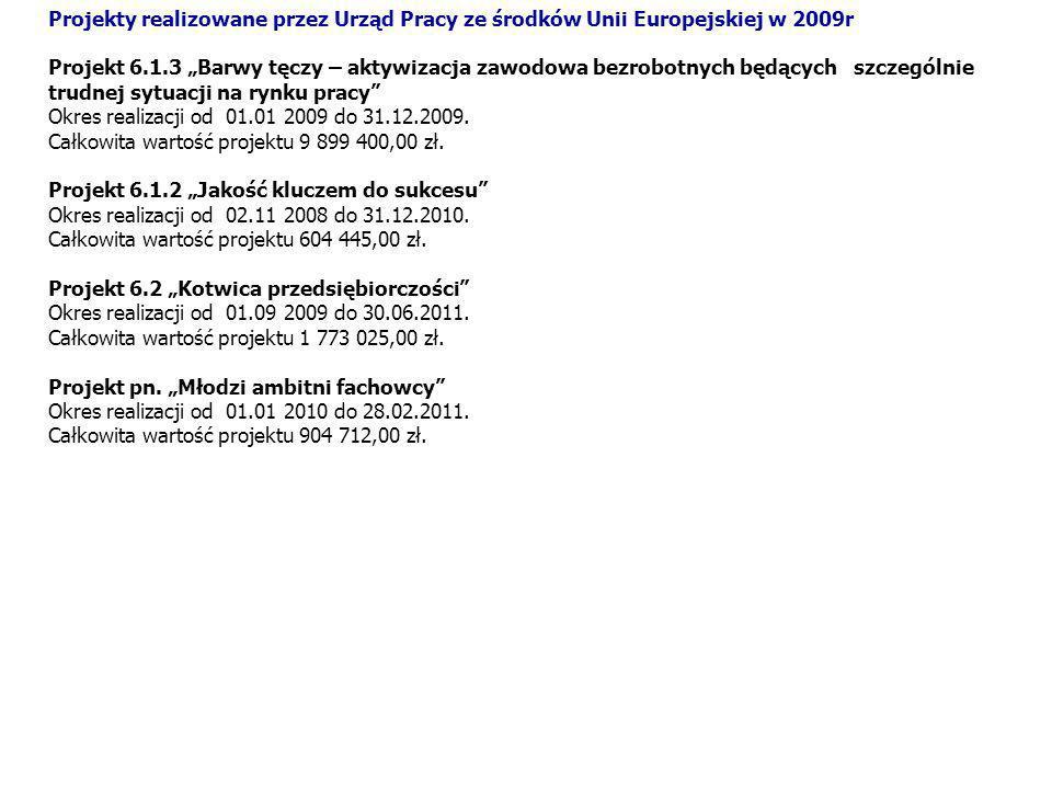 Projekty realizowane przez Urząd Pracy ze środków Unii Europejskiej w 2009r
