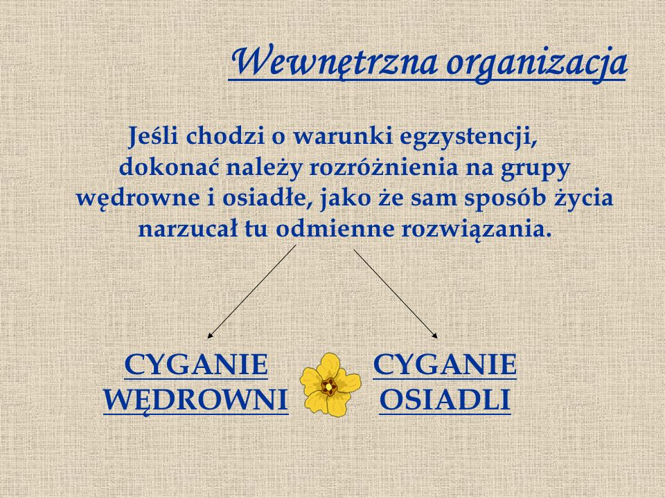 Wewnętrzna organizacja