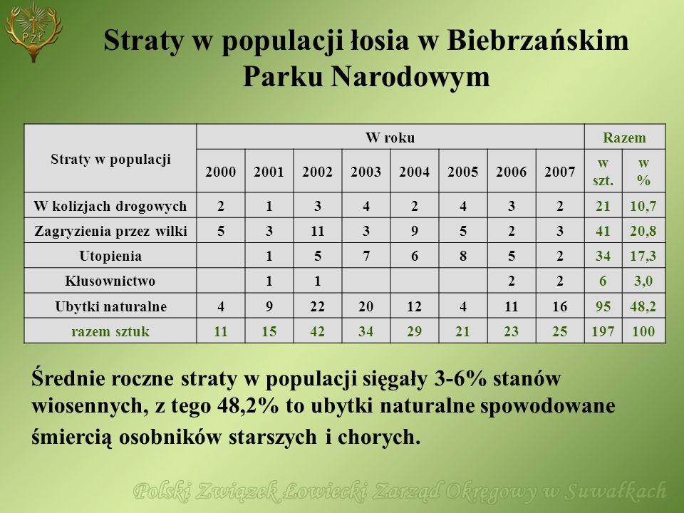 Straty w populacji łosia w Biebrzańskim Parku Narodowym