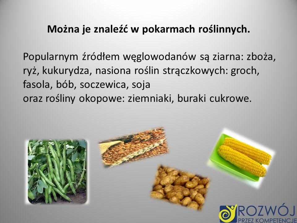 Można je znaleźć w pokarmach roślinnych.