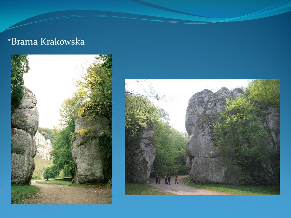 *Brama Krakowska