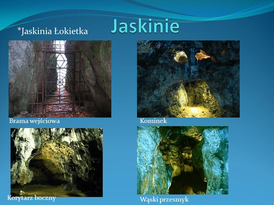 Jaskinie *Jaskinia Łokietka Brama wejściowa Kominek Korytarz boczny