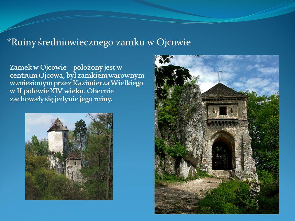 *Ruiny średniowiecznego zamku w Ojcowie