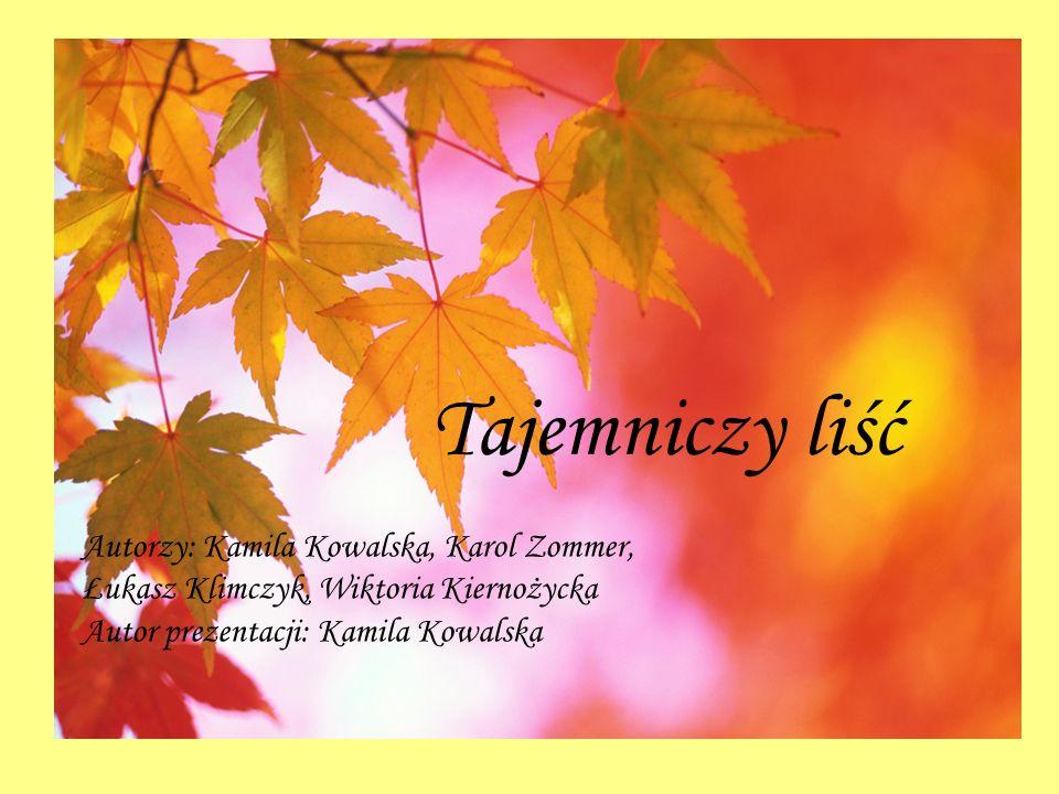 Tajemniczy liść Autorzy: Kamila Kowalska, Karol Zommer,
