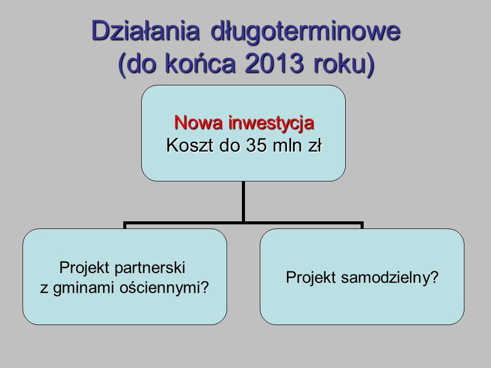 Działania długoterminowe (do końca 2013 roku)