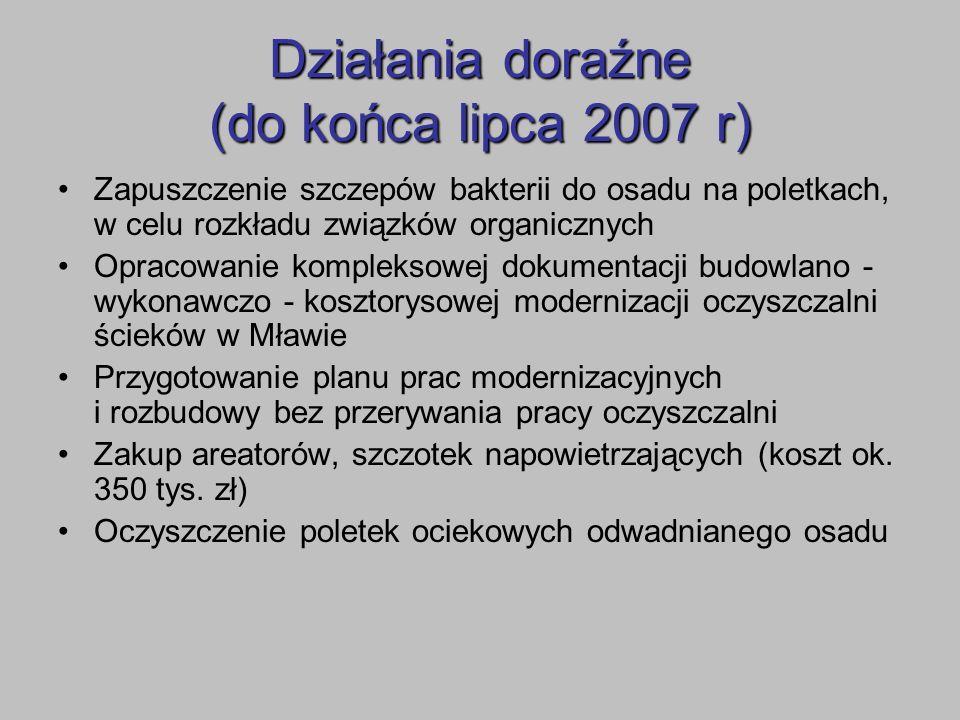 Działania doraźne (do końca lipca 2007 r)