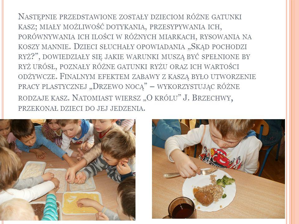 Następnie przedstawione zostały dzieciom różne gatunki kasz; miały możliwość dotykania, przesypywania ich, porównywania ich ilości w różnych miarkach, rysowania na koszy mannie.