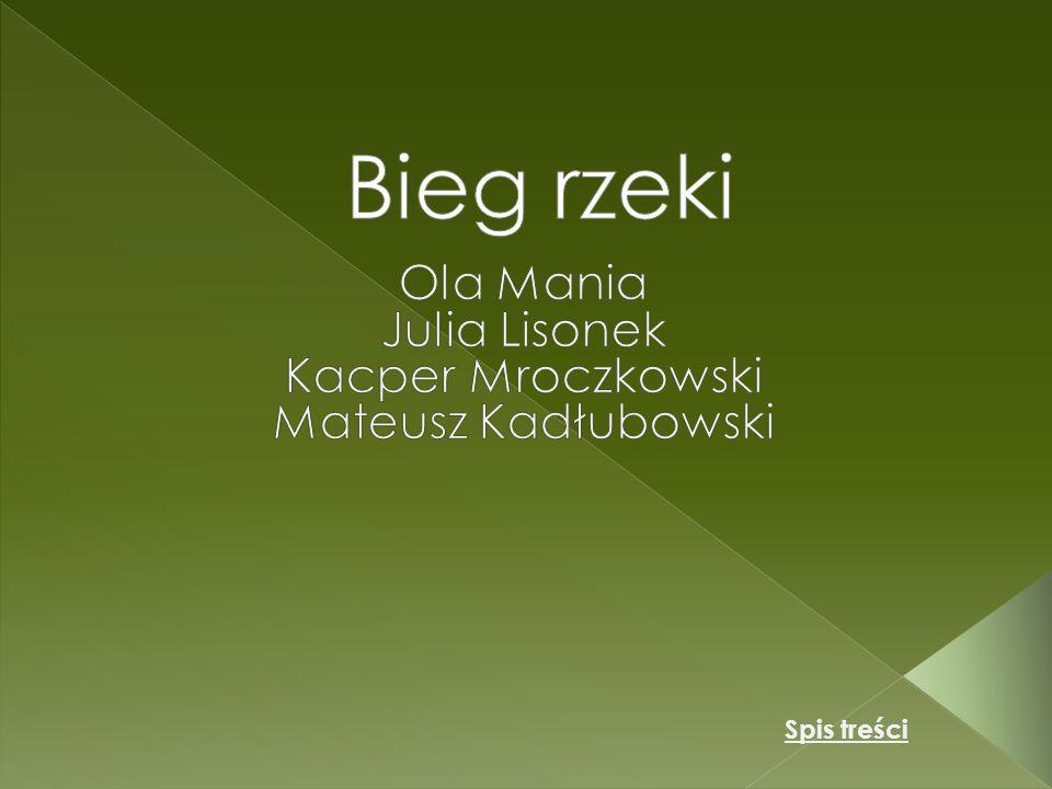 Ola Mania Julia Lisonek Kacper Mroczkowski Mateusz Kadłubowski