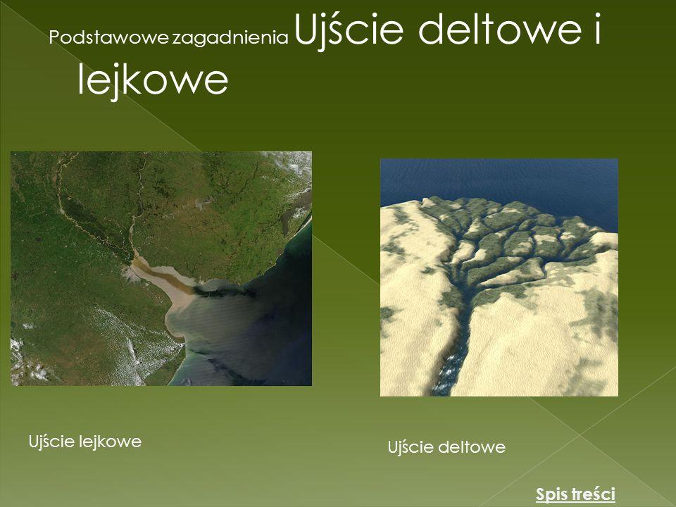 Podstawowe zagadnienia Ujście deltowe i lejkowe