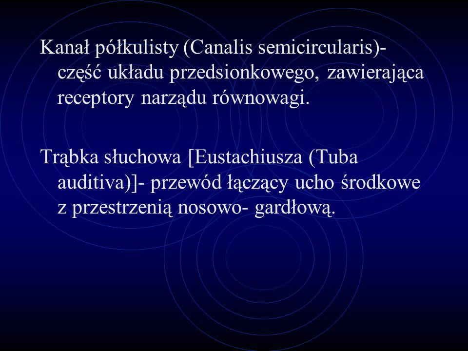 Kanał półkulisty (Canalis semicircularis)- część układu przedsionkowego, zawierająca receptory narządu równowagi.