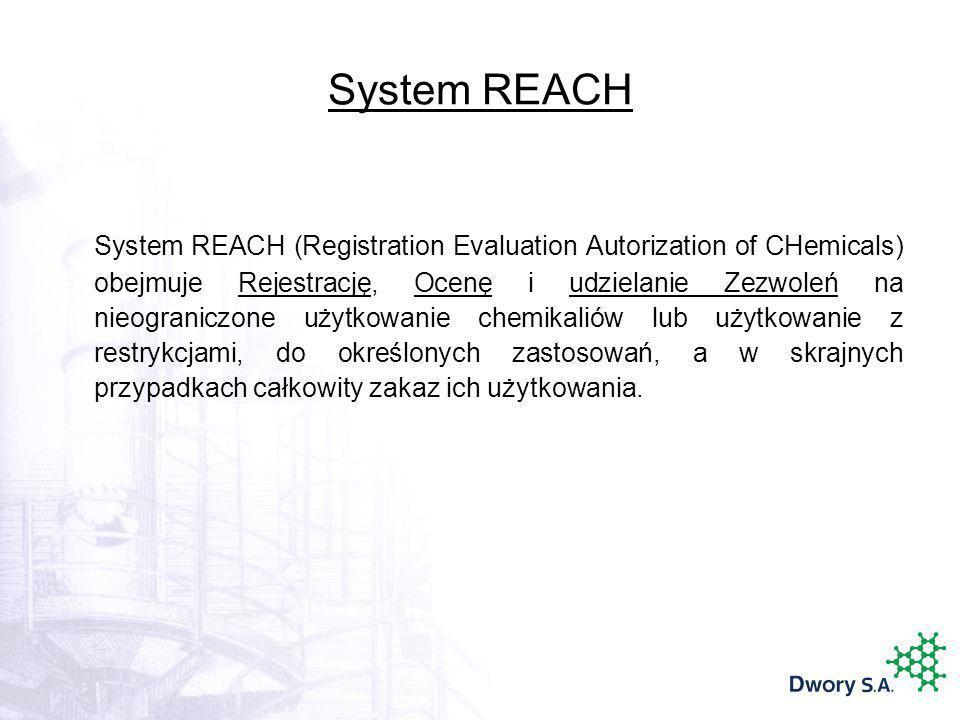 System REACH