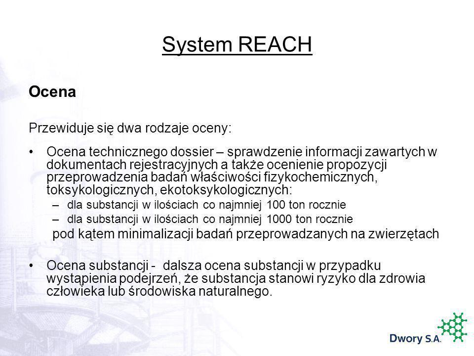 System REACH Ocena Przewiduje się dwa rodzaje oceny: