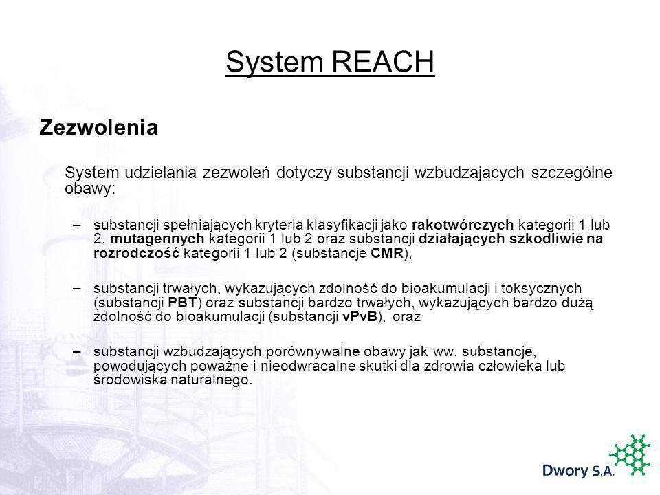 System REACH Zezwolenia