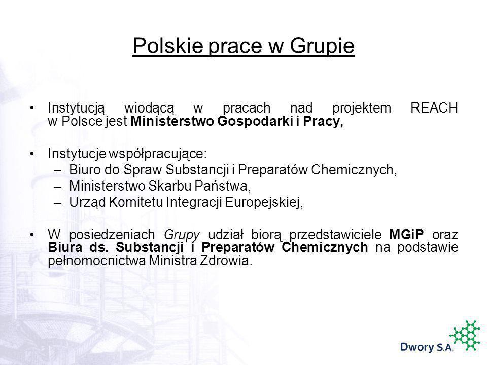 Polskie prace w Grupie Instytucją wiodącą w pracach nad projektem REACH w Polsce jest Ministerstwo Gospodarki i Pracy,