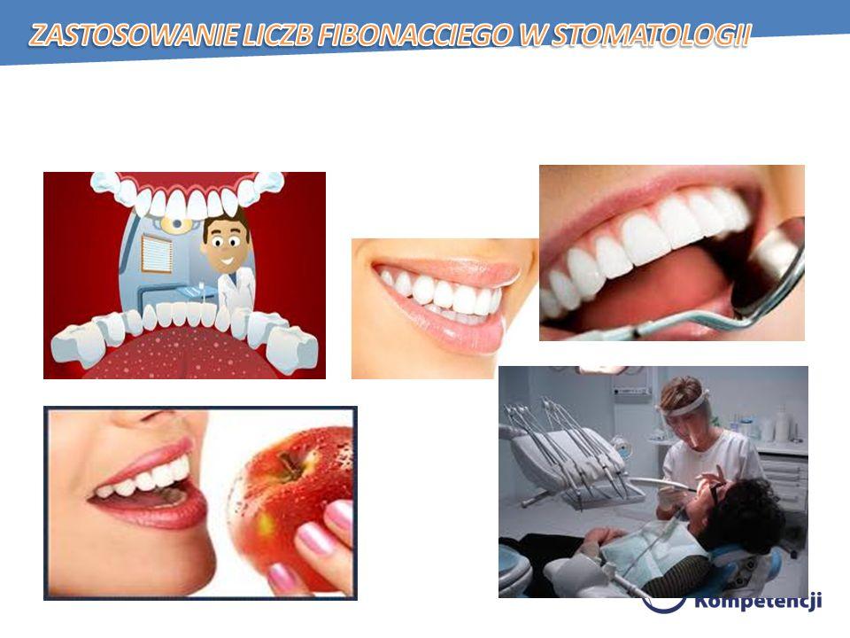 Zastosowanie liczb Fibonacciego w stomatologii