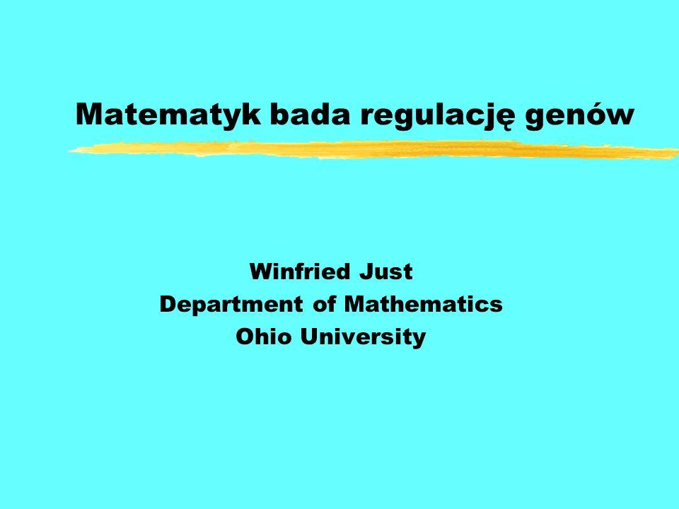 Matematyk bada regulację genów