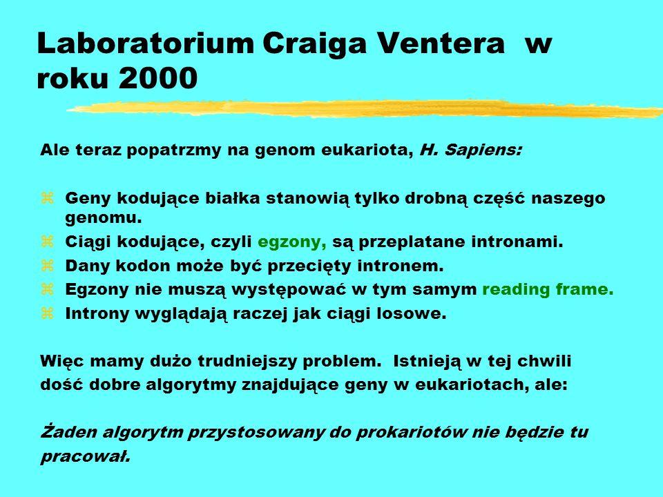Laboratorium Craiga Ventera w roku 2000
