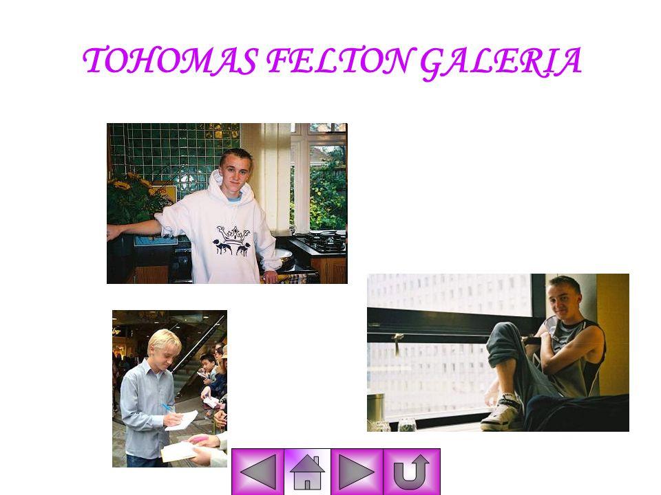TOHOMAS FELTON GALERIA