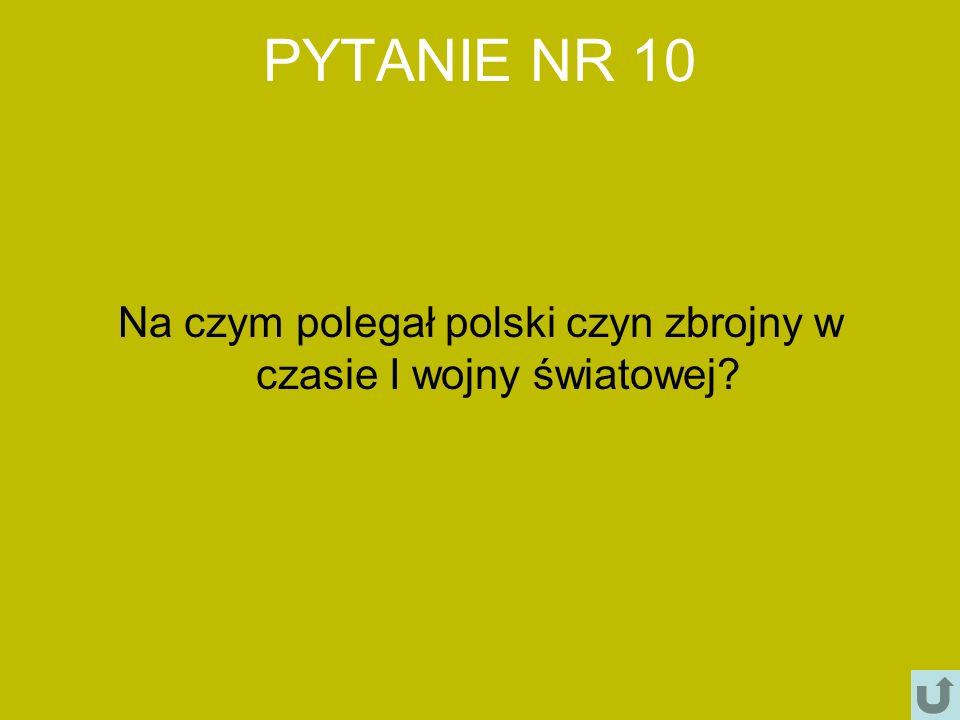 Na czym polegał polski czyn zbrojny w czasie I wojny światowej