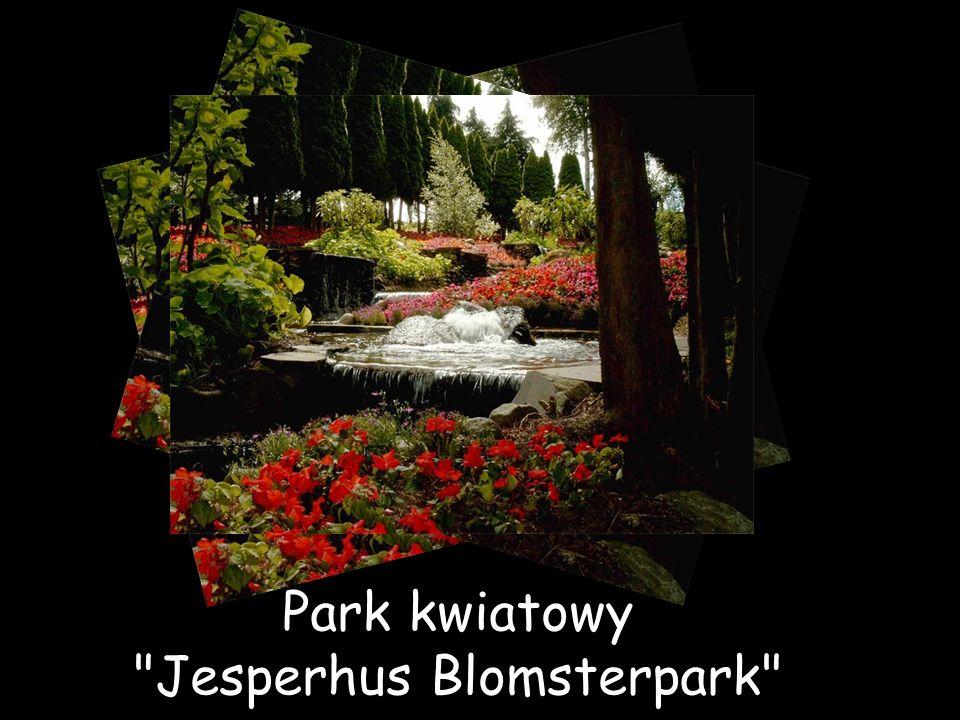 Park kwiatowy Jesperhus Blomsterpark