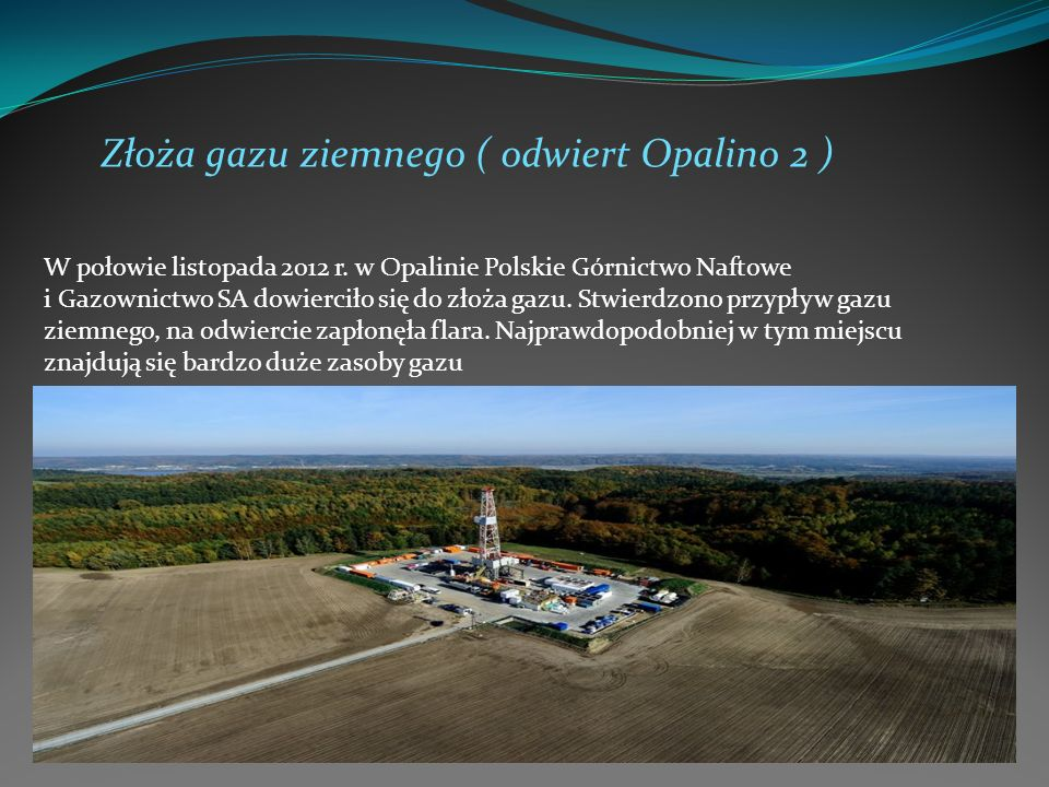 Złoża gazu ziemnego ( odwiert Opalino 2 )