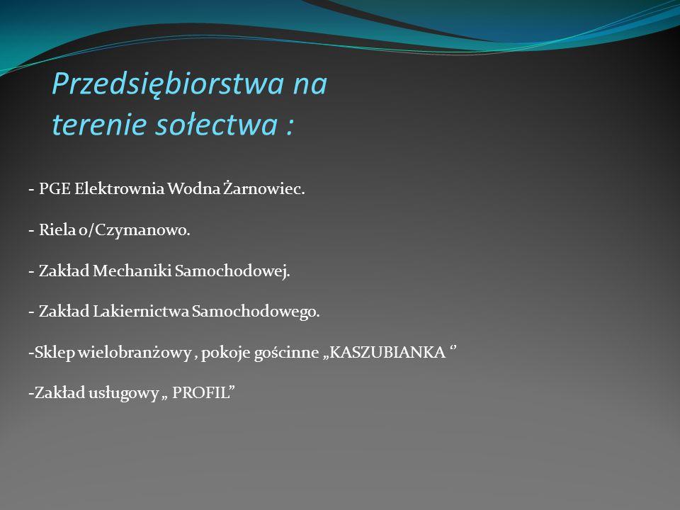 Przedsiębiorstwa na terenie sołectwa :
