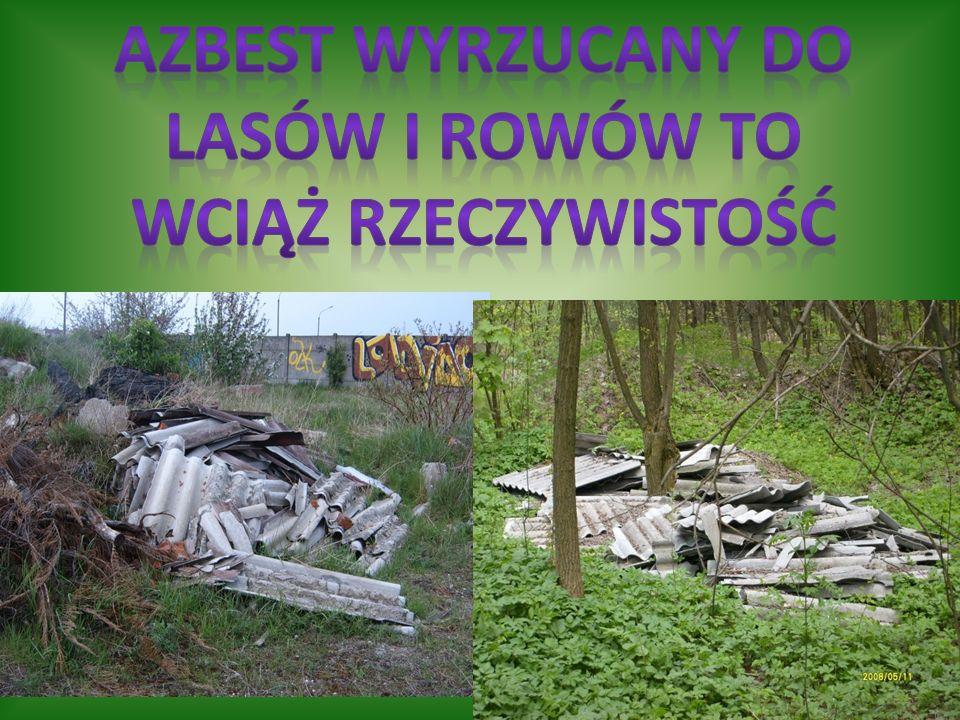 Azbest wyrzucany do lasów i rowów to wciąż rzeczywistość