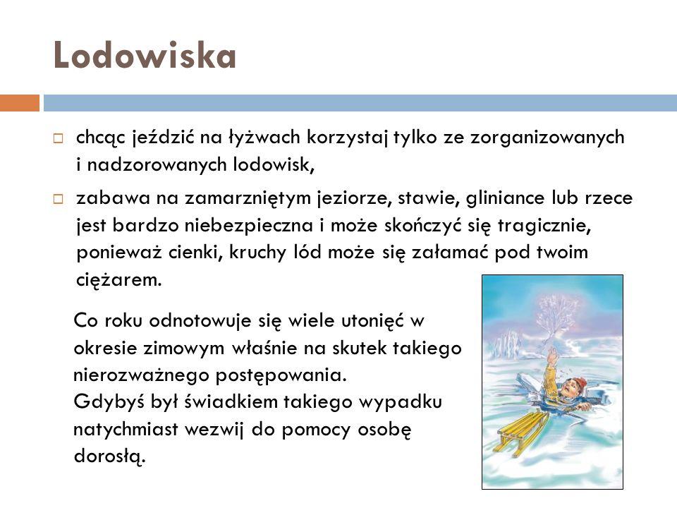 Lodowiska chcąc jeździć na łyżwach korzystaj tylko ze zorganizowanych i nadzorowanych lodowisk,