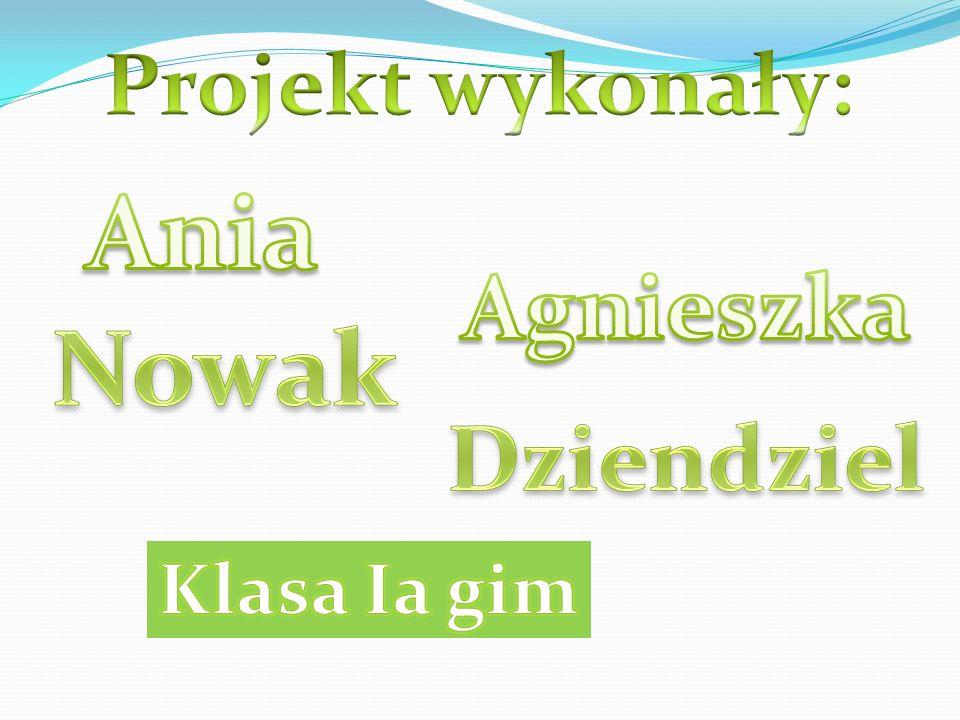 Projekt wykonały: Ania Agnieszka Nowak Dziendziel Klasa Ia gim