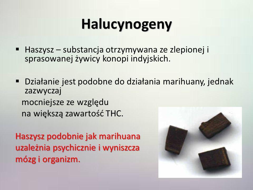 Halucynogeny Haszysz – substancja otrzymywana ze zlepionej i sprasowanej żywicy konopi indyjskich.