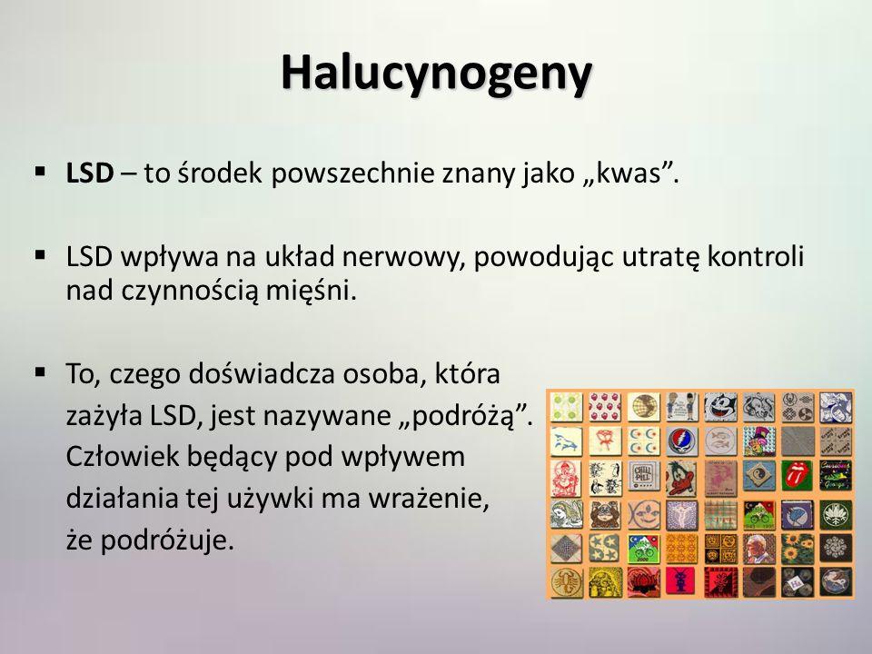 """Halucynogeny LSD – to środek powszechnie znany jako """"kwas ."""
