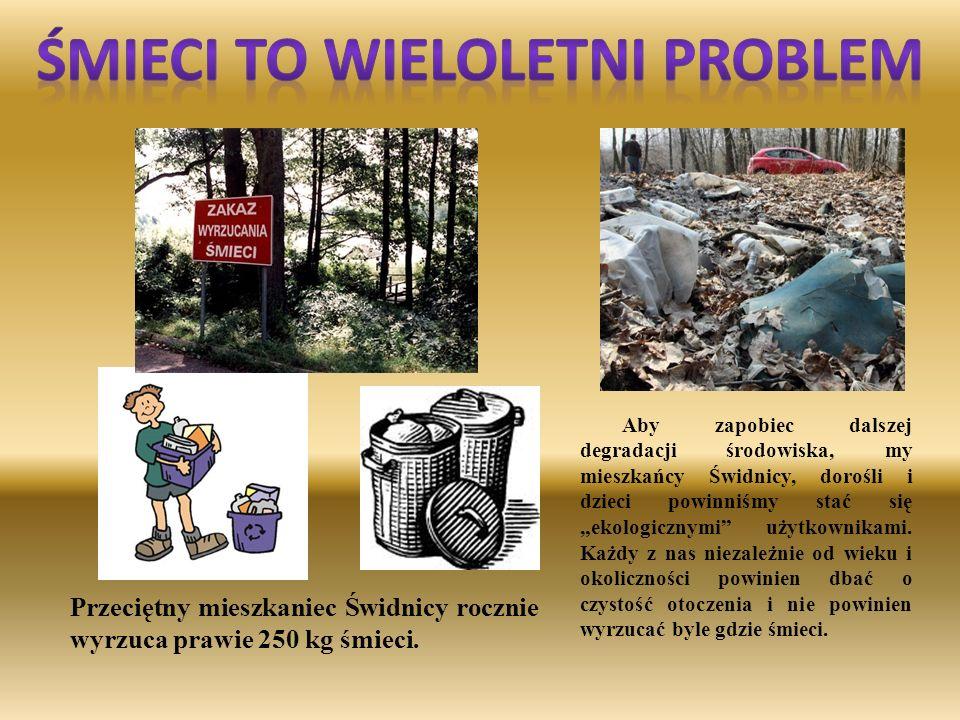 Śmieci to wieloletni problem