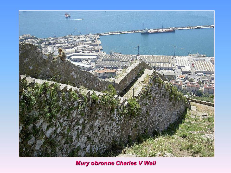 Mury obronne Charles V Wall