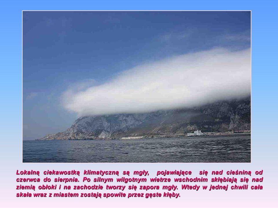 Lokalną ciekawostką klimatyczną są mgły, pojawiające się nad cieśniną od czerwca do sierpnia.