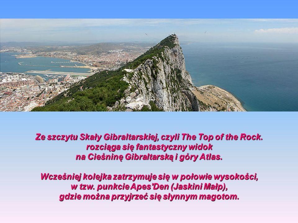 Ze szczytu Skały Gibraltarskiej, czyli The Top of the Rock.
