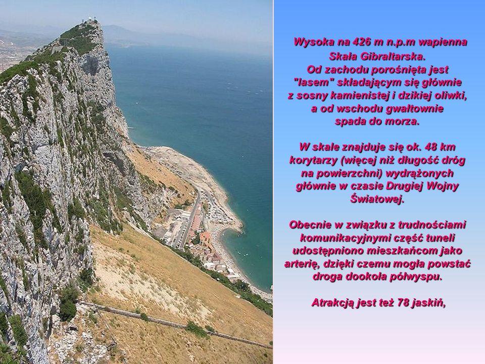 Wysoka na 426 m n.p.m wapienna Skała Gibraltarska.