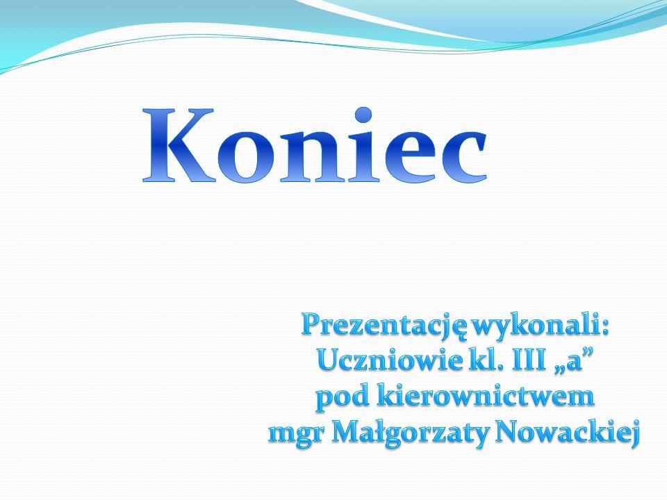 Prezentację wykonali: mgr Małgorzaty Nowackiej