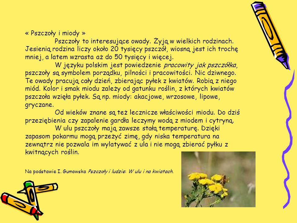 « Pszczoły i miody ». Pszczoły to interesujące owady